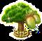 baobab_upgrade_2.png