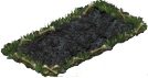 blood fern_plant_1X2.png