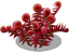 blood fern_plant_Layer1.png