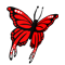 Butterfly_Icon.png