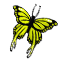 butterfly_stable_02_orange_icon.png