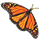 butterfly_workshop_01_yellow_breedingicon_small.png