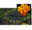 coralmushroom_plant_icon_big.png