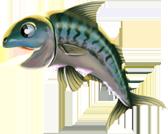 fishingjan2016_mackerel_animation.png