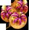 fruitdealersjul2016_wonderfruit_shopsale.png