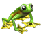 icon_breeding_meadow_frog_02.png