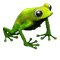 icon_breeding_meadow_frog_05.png