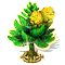 norfolkpine_upgrade_2.png