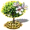 salixintegra_upgrade_2.png