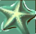 starfish_02.png