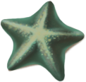 starfish_02_rewarded.png